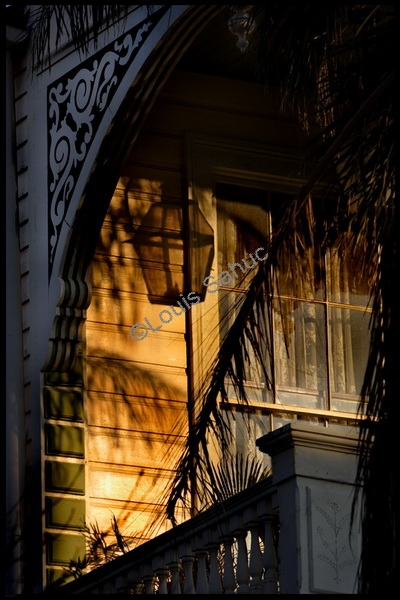 Marigny Shadows.jpg