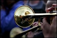 Trumpet Blue.jpg