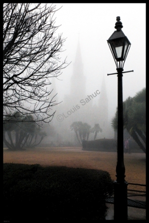 January Fog with watermark.jpg